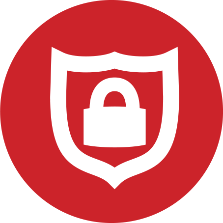 Physical Security Icon